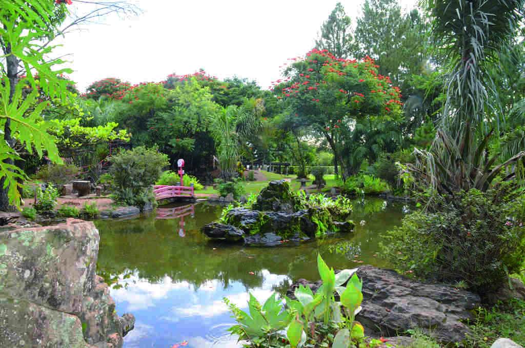 Resultado de imagem para jardim japonês caldas novas